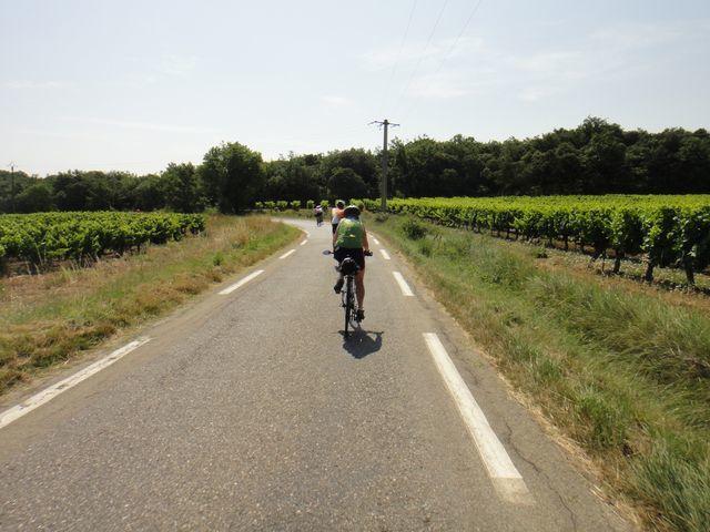 Nous retrouvons les vignes du Gard et des routes plates. Par contre, il fait chaud.