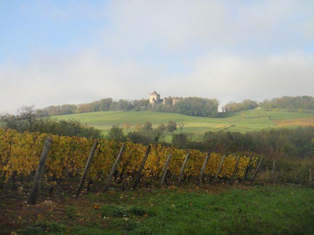 Le château du Pin émerge doucement du brouillard.