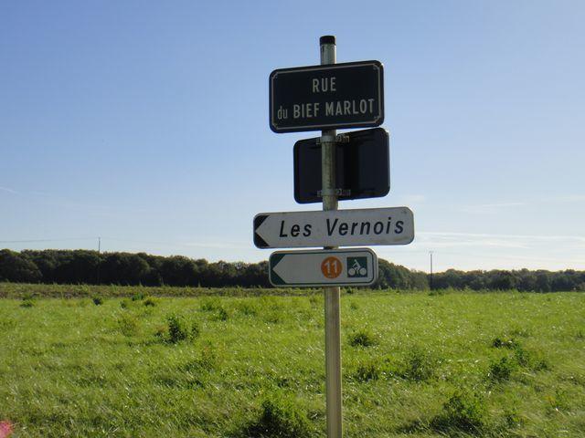 Heureusement que les flèches sont là car sinon c'est très facile de se perdre en Bresse et notamment sur la commune de Chapelle Voland.