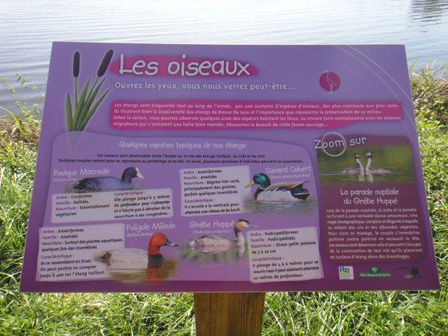 Au bord de l'étang, parcours ludique pour les enfants.