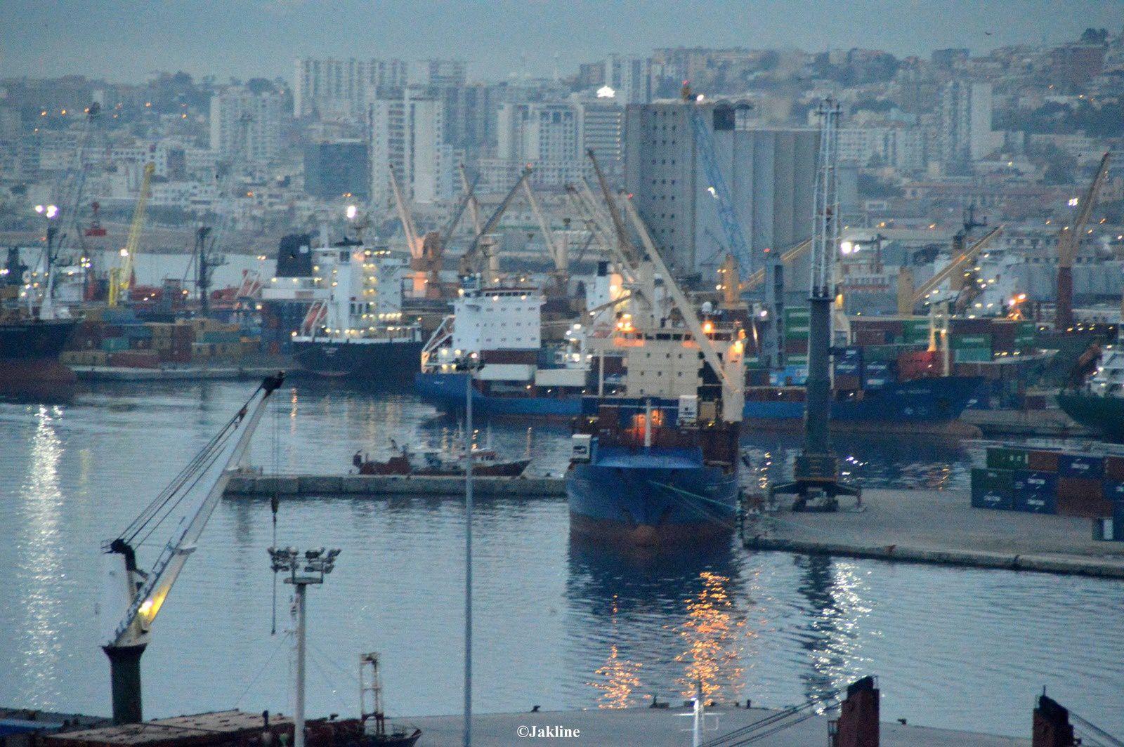 Leport d'Alger
