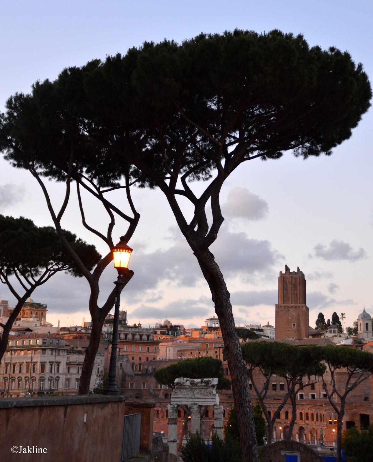 Quand le soir descend....sur le Forum romain