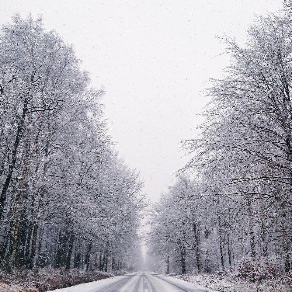 Première neige 2014 dans les Ardennes