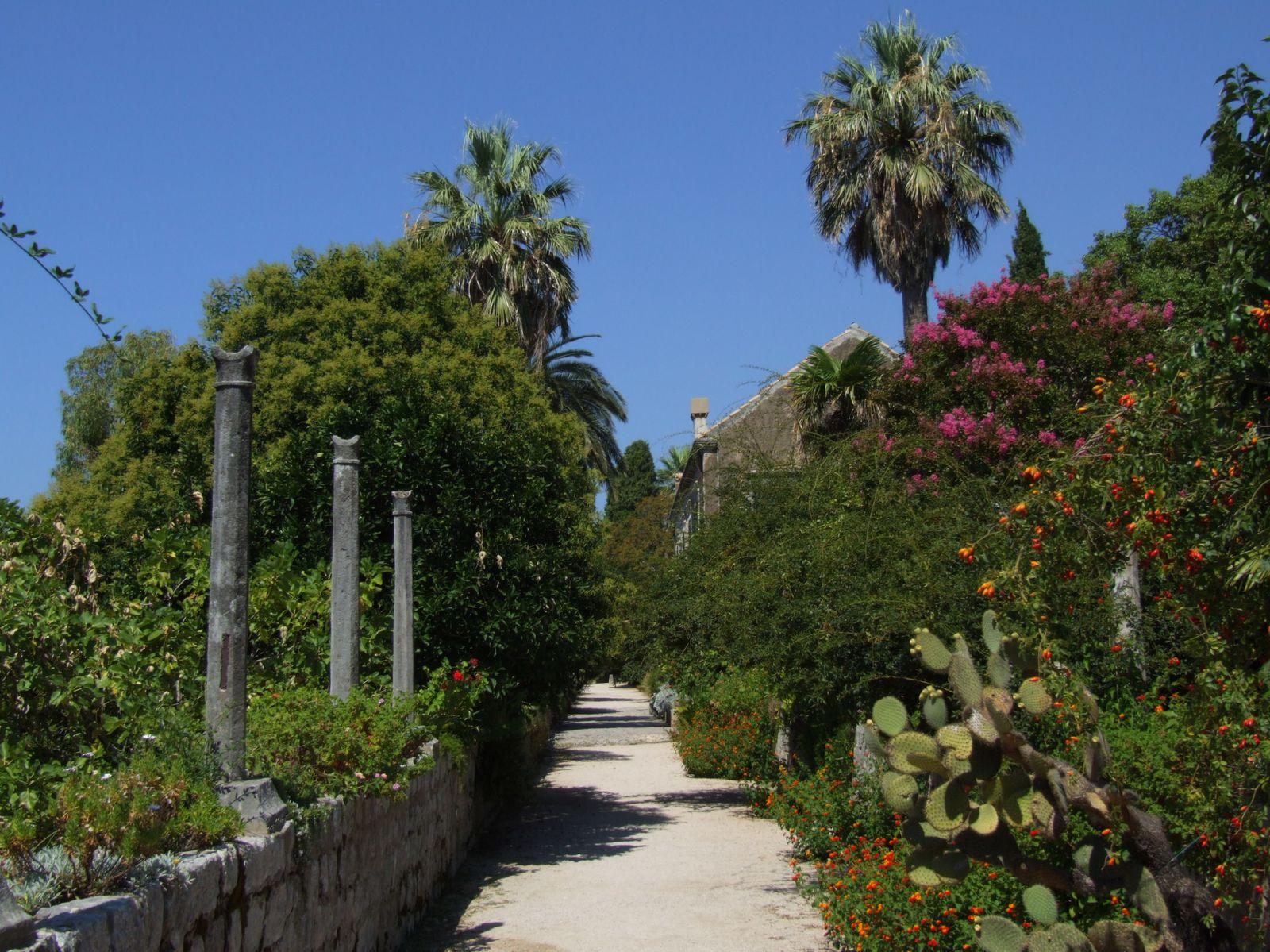 L'arboretum de Trsteno
