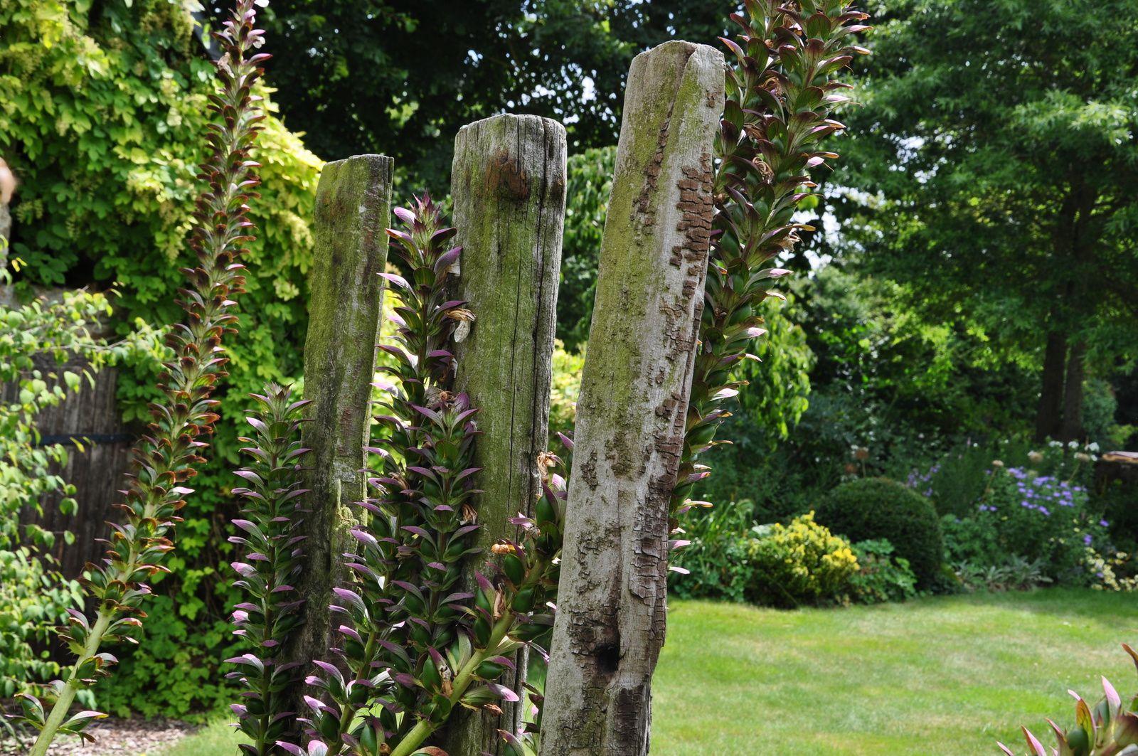 Le jardin La Maison ou quand le style anglais est revisité