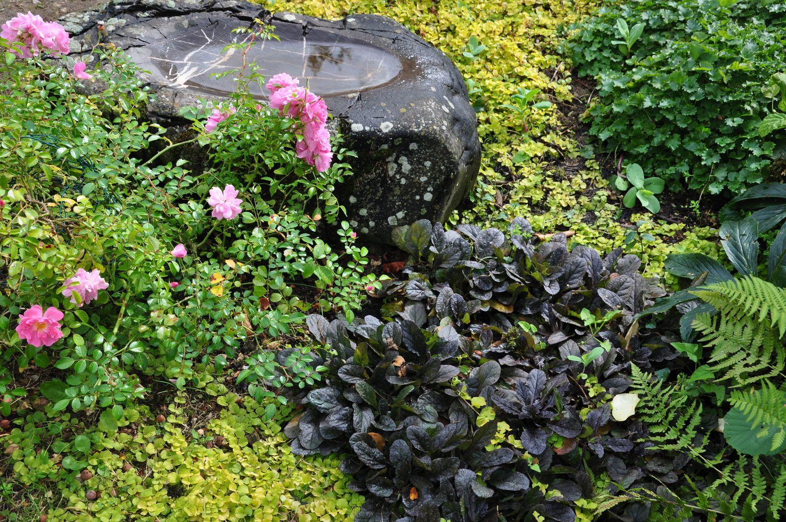 La permanence au jardin