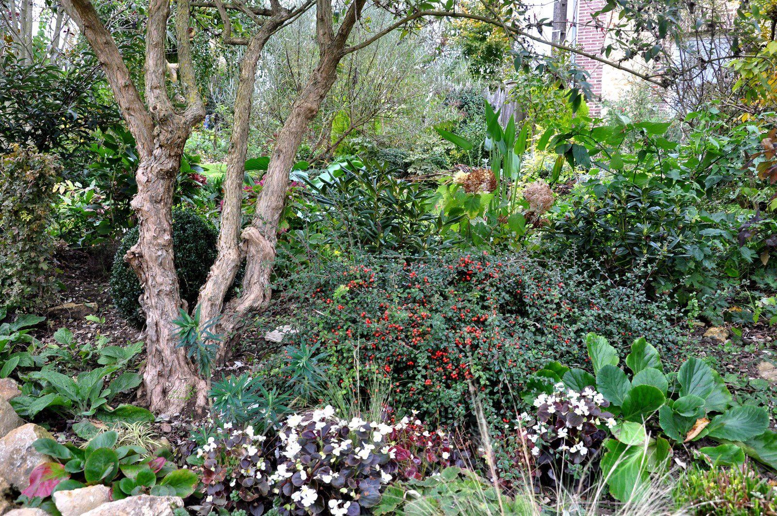 Un jardin reflet d'une âme jardinière