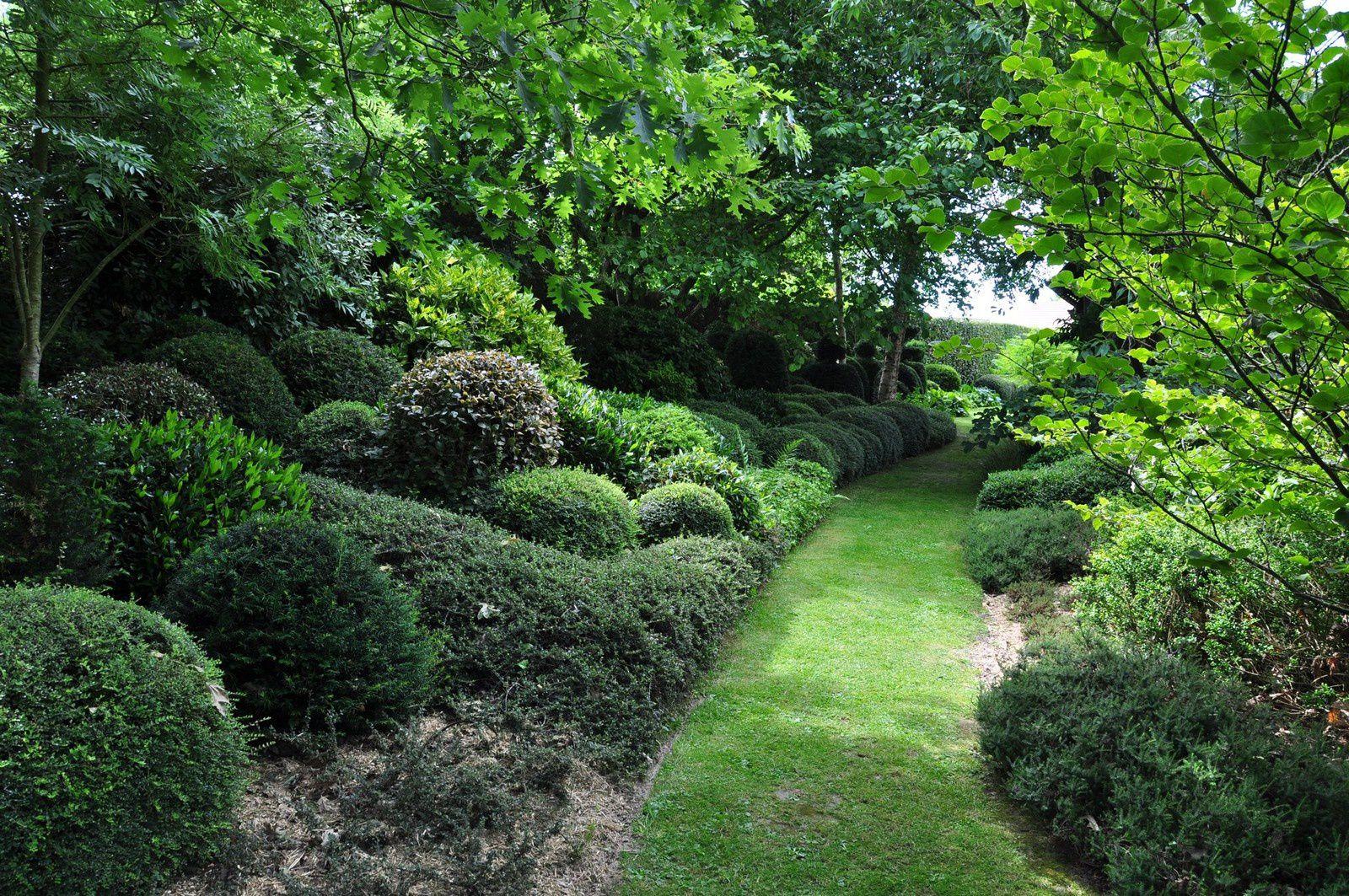 La Mare aux Trembles, un jardin qui fait danser le vert et tourner les têtes