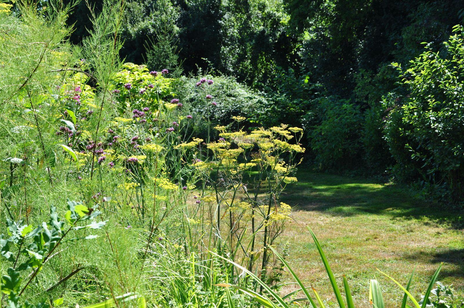 Jardinage hors piste : le jardin Mosaïque