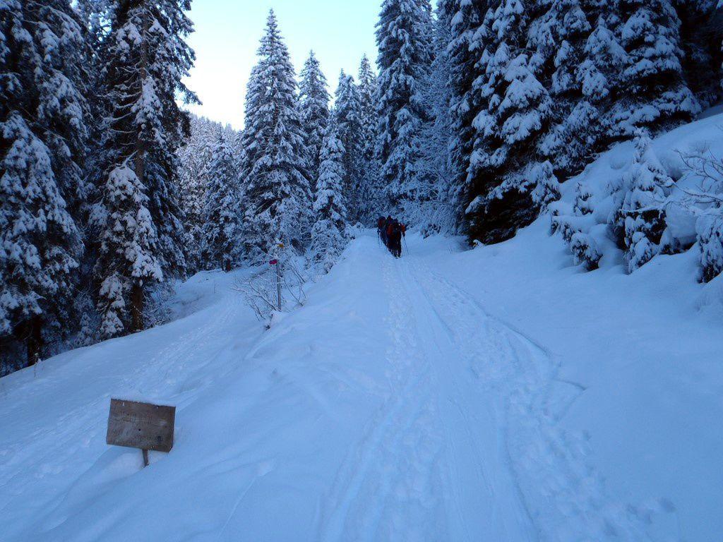 """Les """"anciens"""" sont là, c'est bon signe, la neige sera bonne &#x3B;-)"""