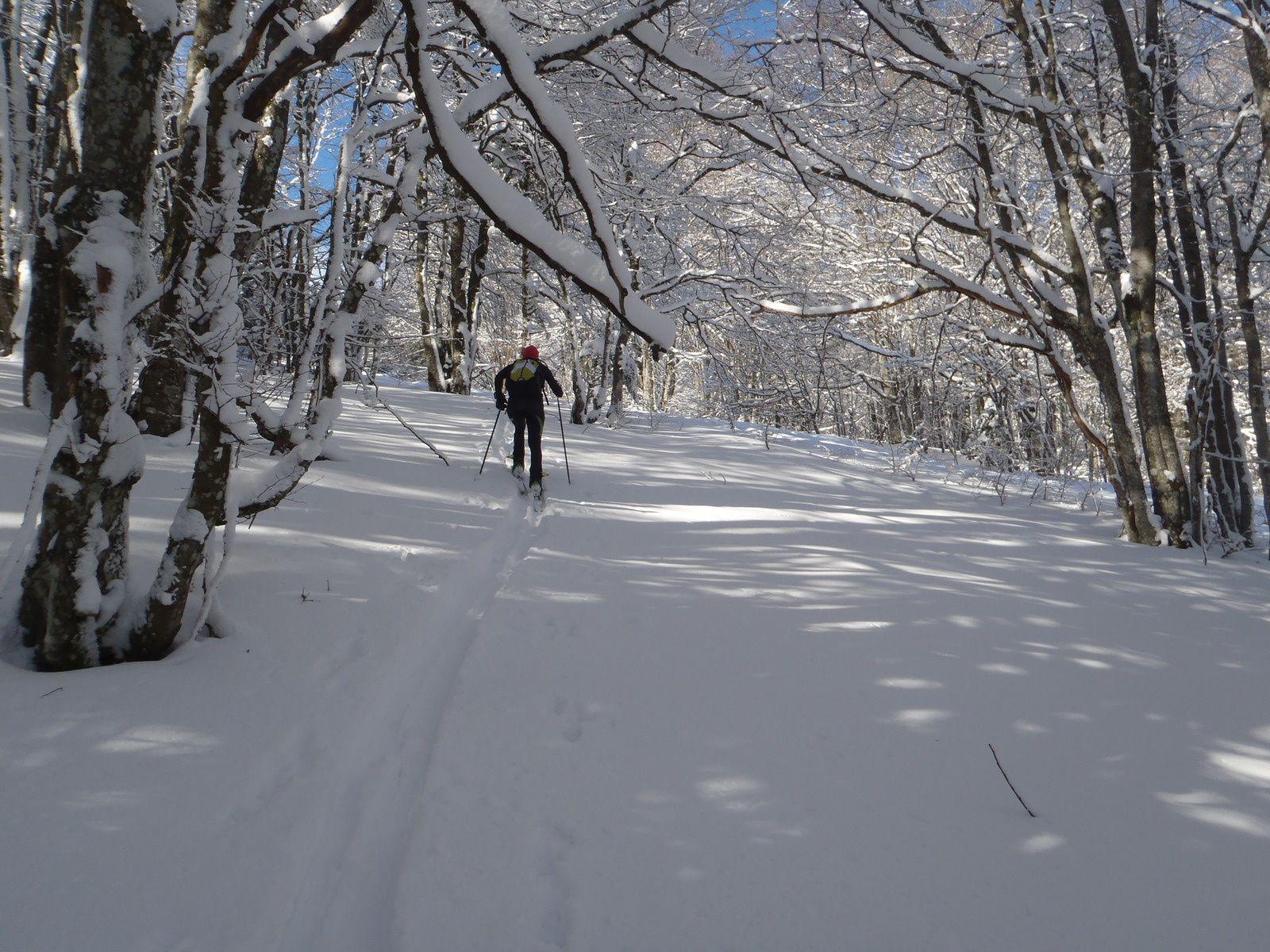 2014: Neige et soleil, ce n'est pas trop tôt!