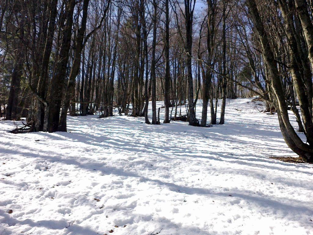 On est même parvenu à faire skier un bonhomme de neige!