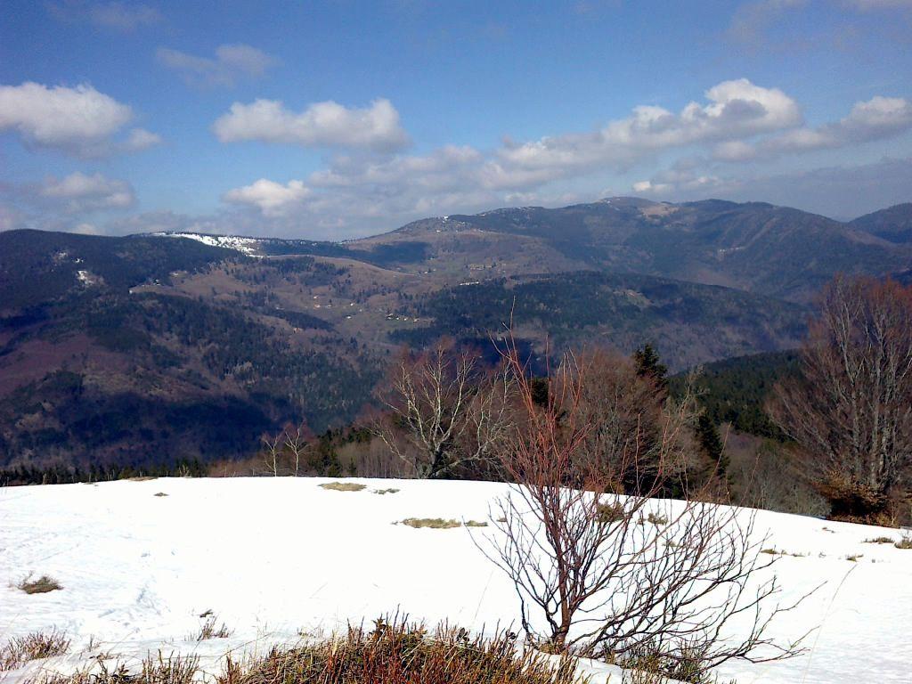 2016: Les skis bronzent
