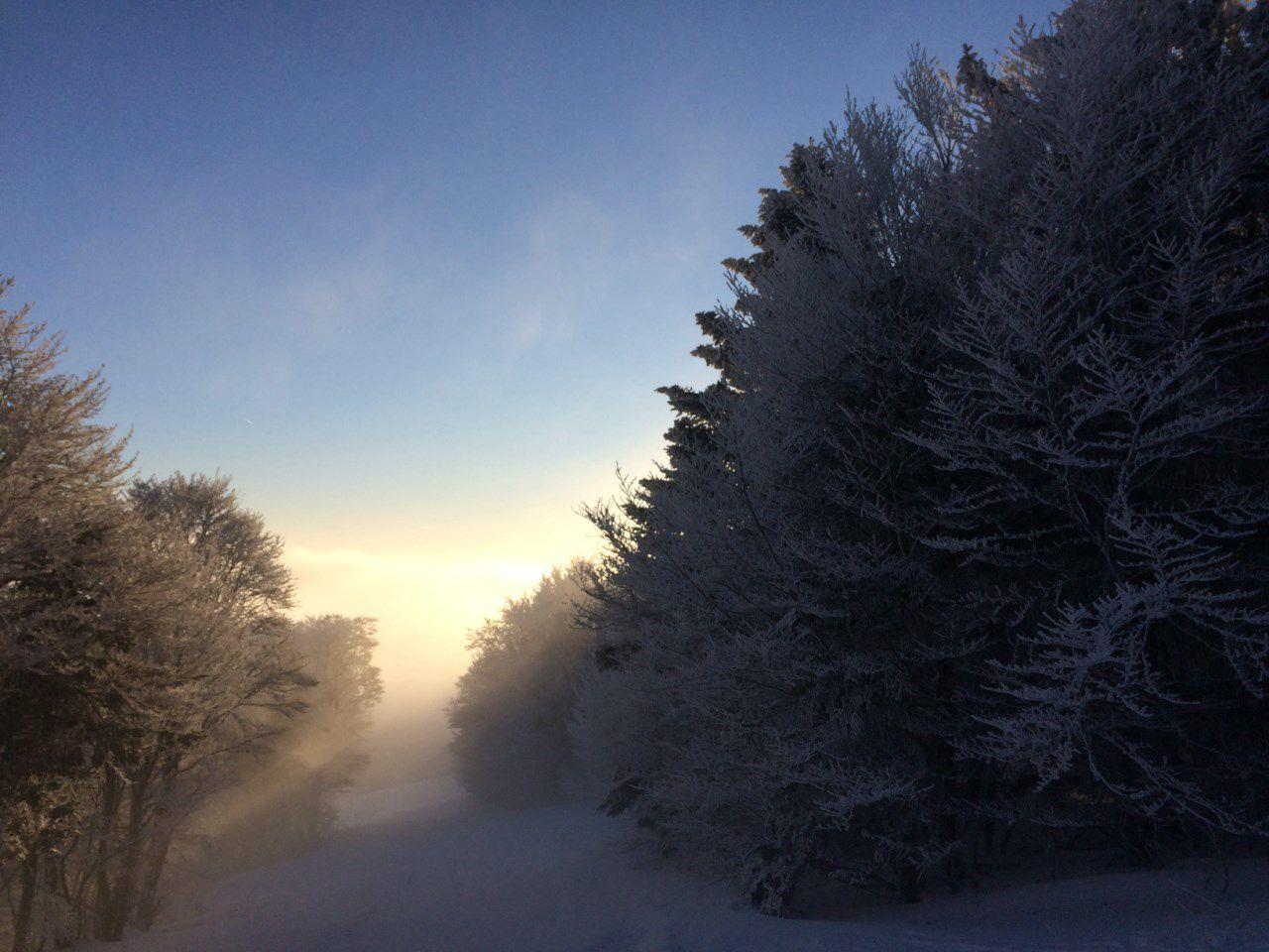 2017: Mercredi à la neige