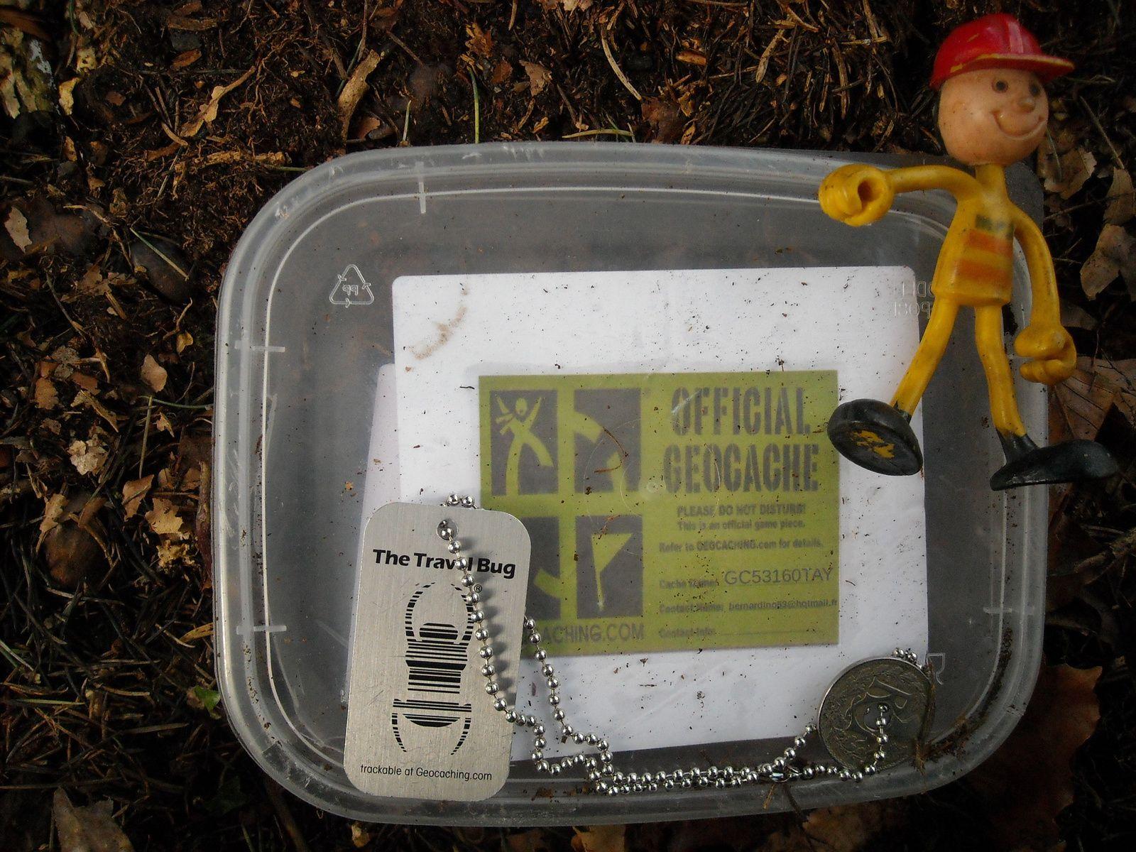 Ma boîte au bois du Tay... et le nouvel objet voyageur. Combien de temps restera-t-il pensionnaire ici?