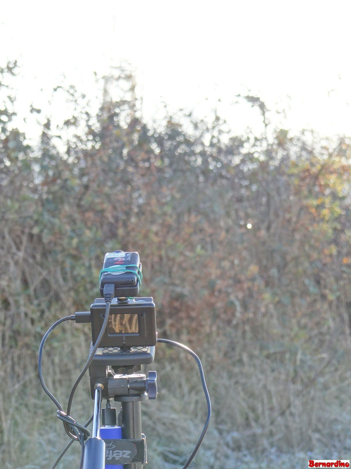 Mes petites caméras  avaient bien froid ce matin!