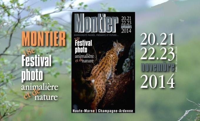 FESTIVAL 2014 DE LA PHOTO ANIMALIERE A MONTIER EN DER.