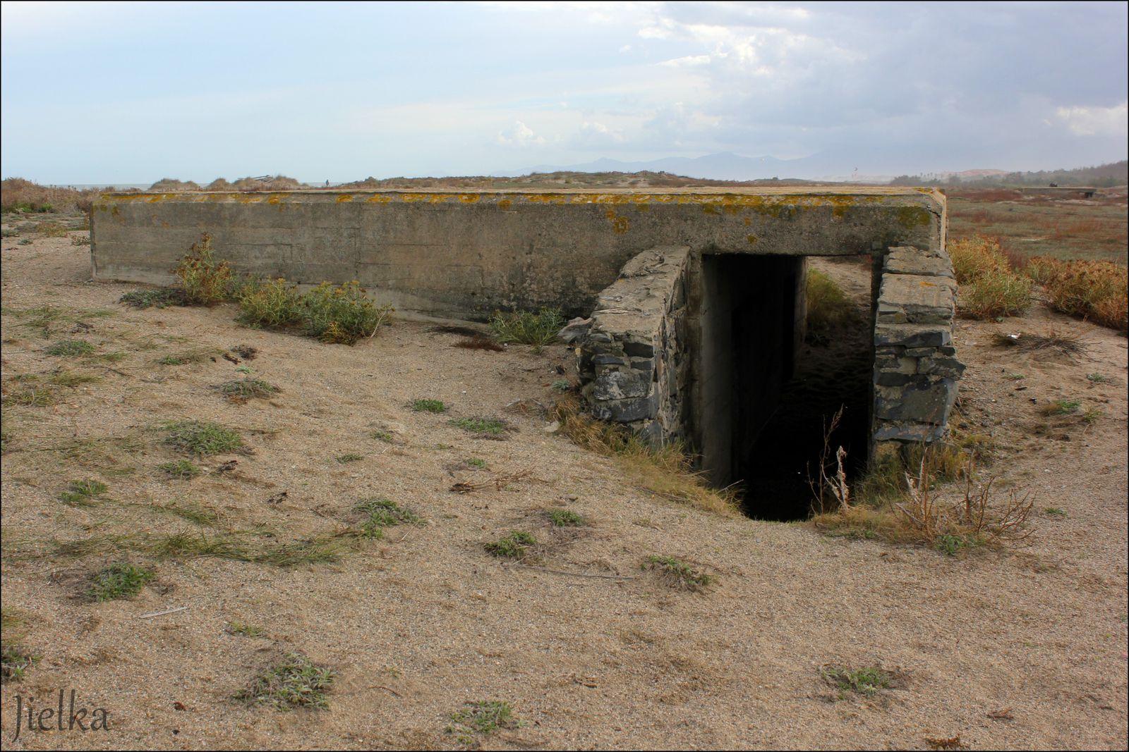 Entre Torreilles et Ste Marie des blockaus et abris pour une quarantaine de soldats Allemands.