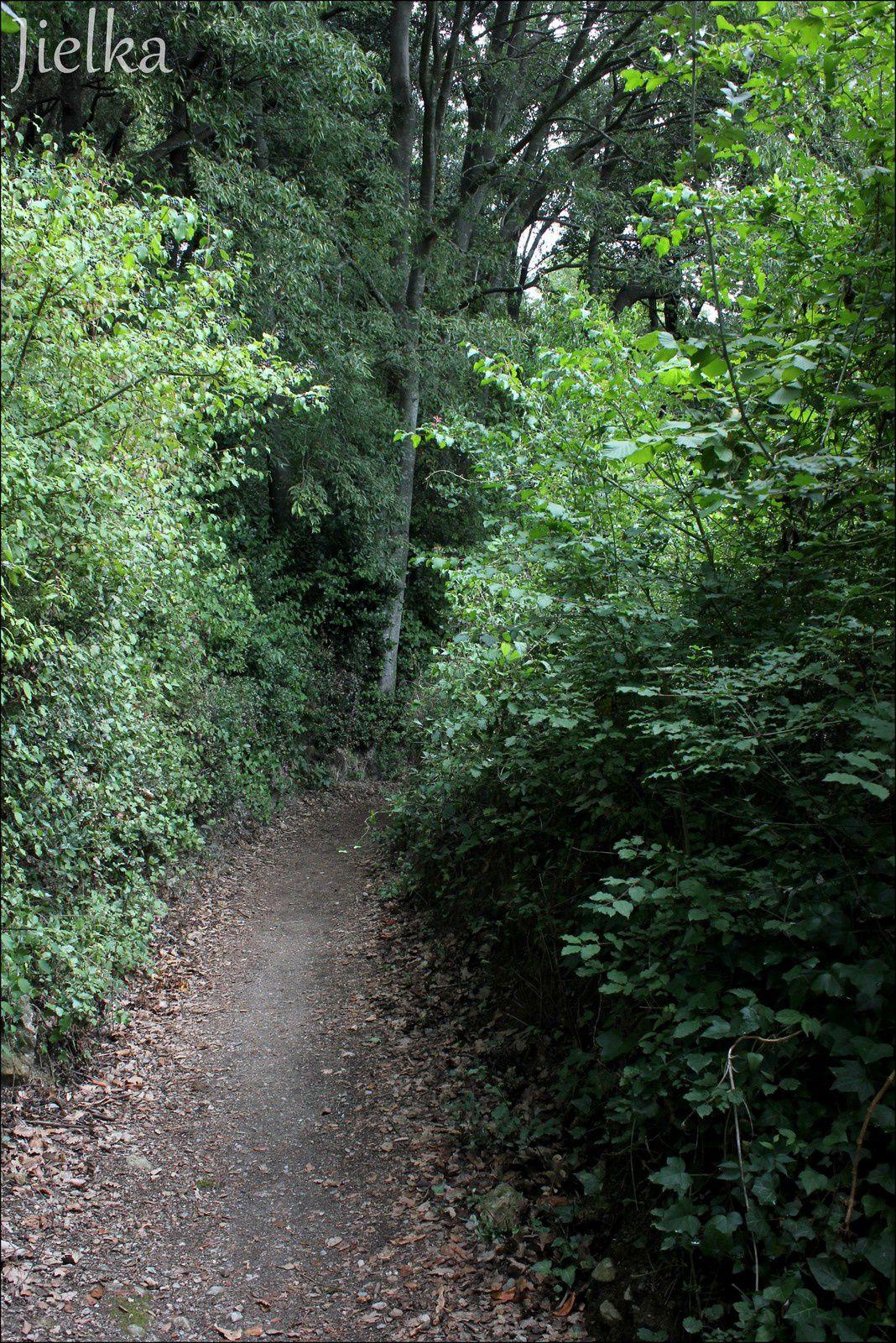 CÉRET (La cascade des Baoussous)