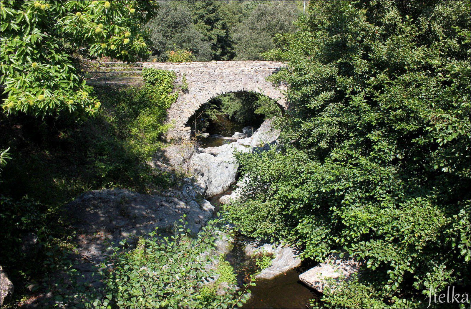 le vieux pont du moulin