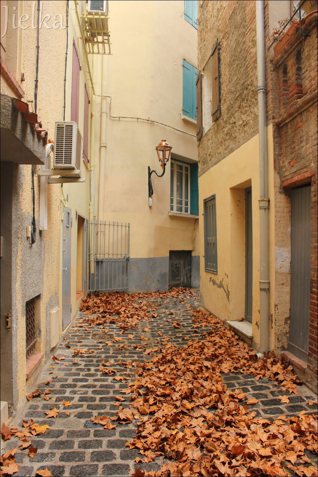 CÉRET (les feuilles mortes...)