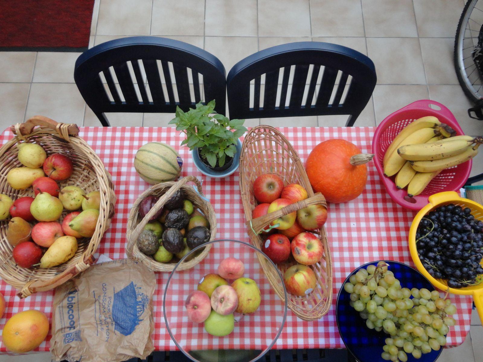 Alimentation crudivore, vitalité, santé