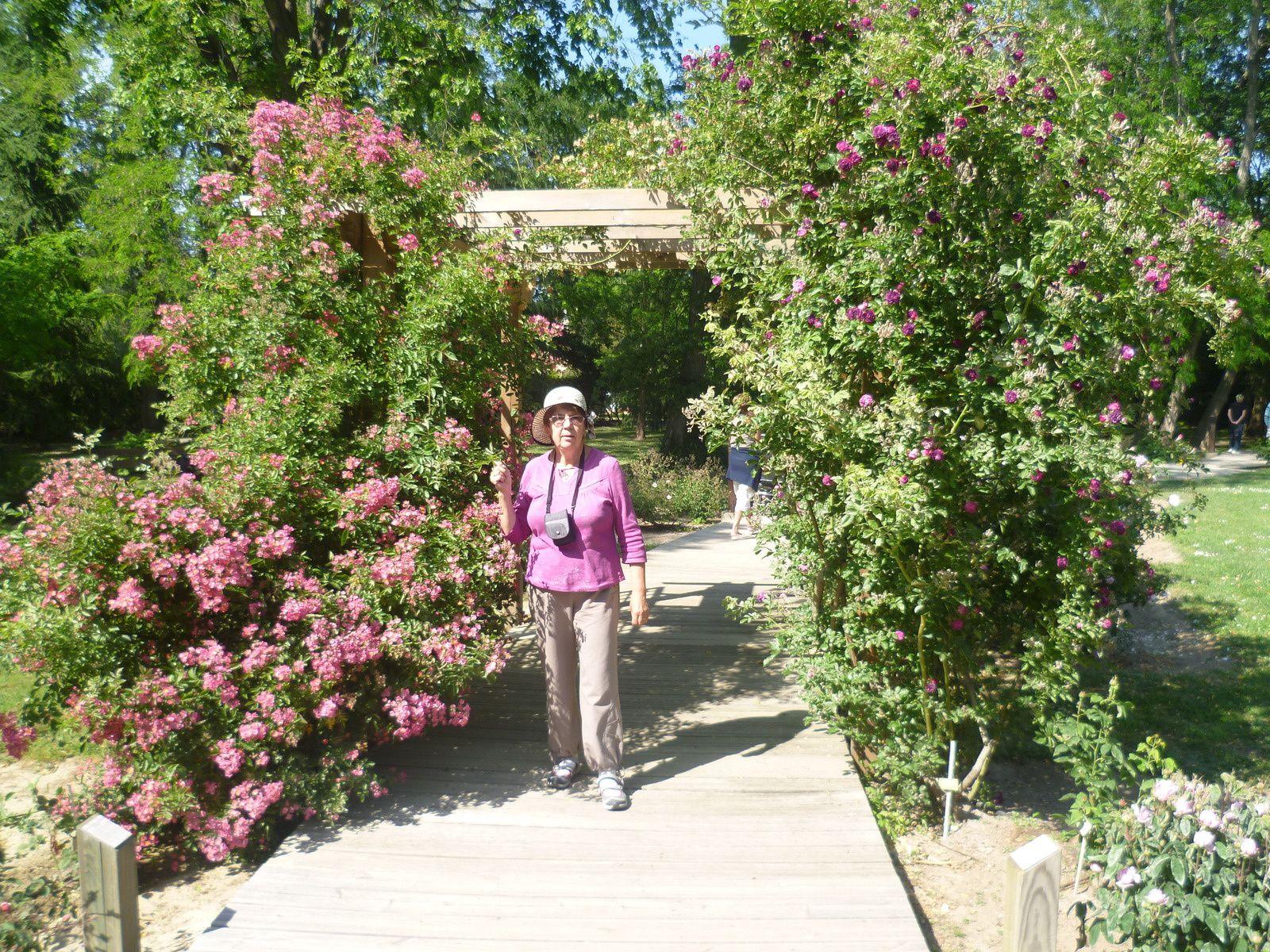 puis nous avons terminé notre journée au jardin des plantes de ST-Cyprien...passez une bonne journée amitiés YVETTE