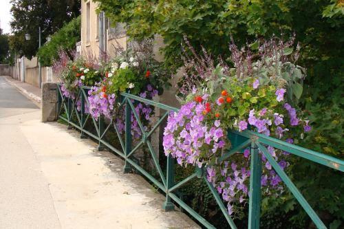 Vendôme, ville-jardin   Vendôme a conservé depuis le XVIIème siècle un patrimoine unique d'espaces verts et de jardins sur une centaine d'hectares, toujours fleuris et entretenus avec passion dans une logique respectueuse de l'environnement.