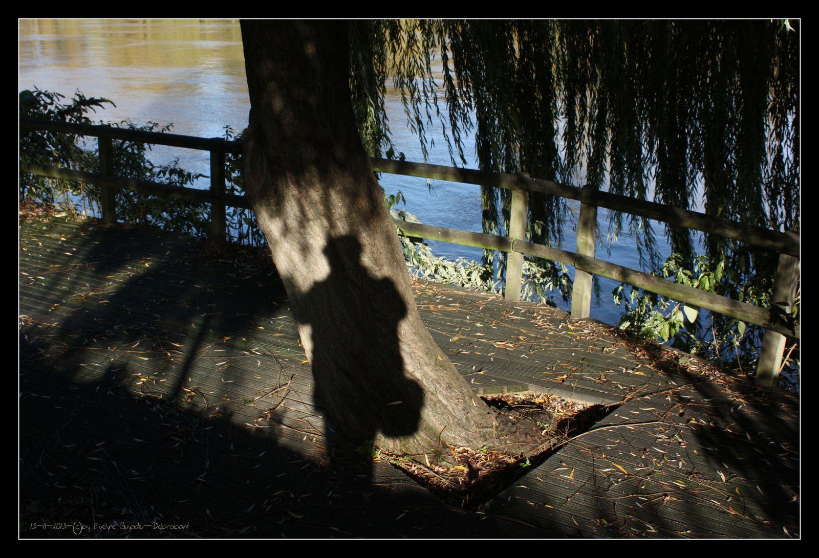 L'Automne, Auprès de mon arbre...