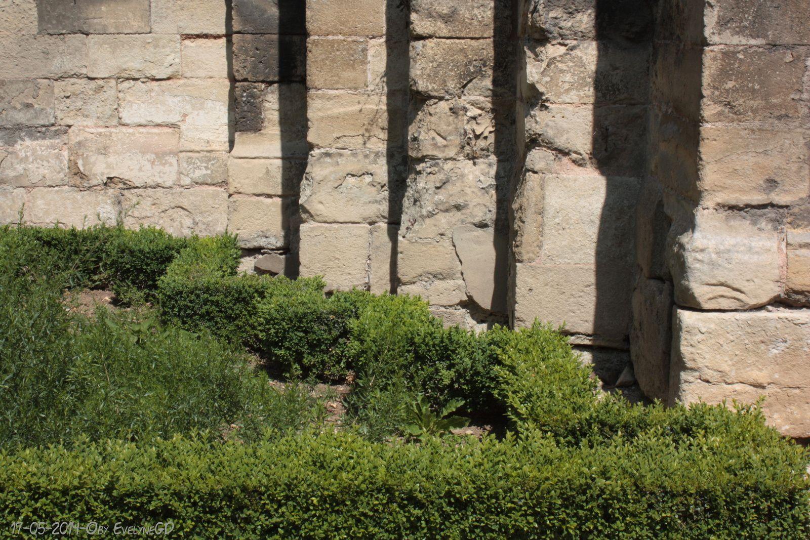 Le Jardin des Simples...