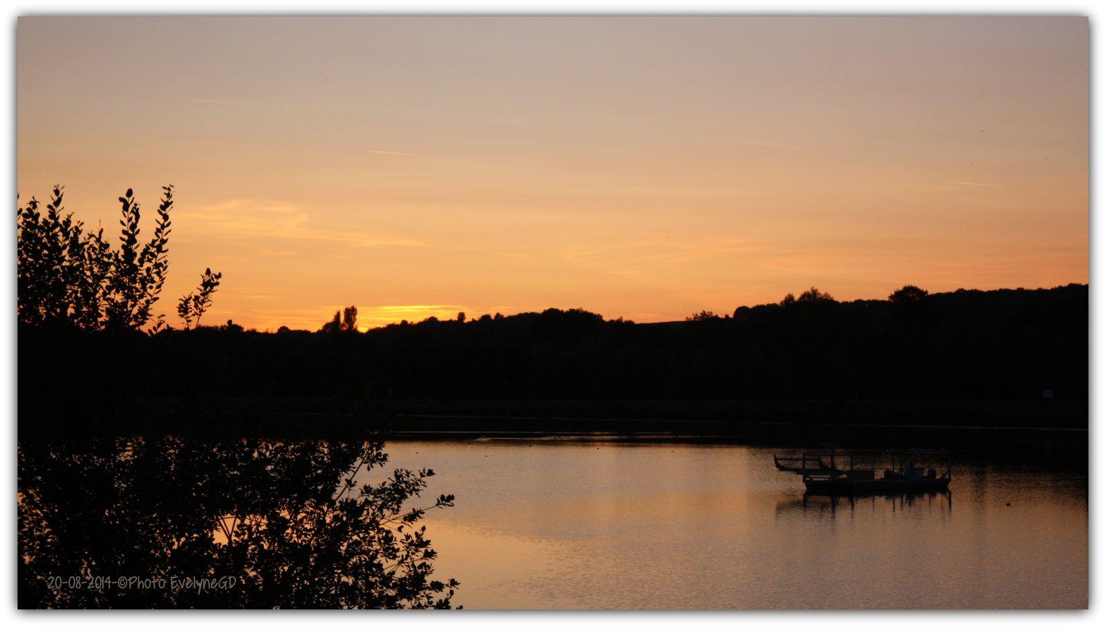 .. et les oies bernaches se rassemblent sur les pontons pour la nuit..