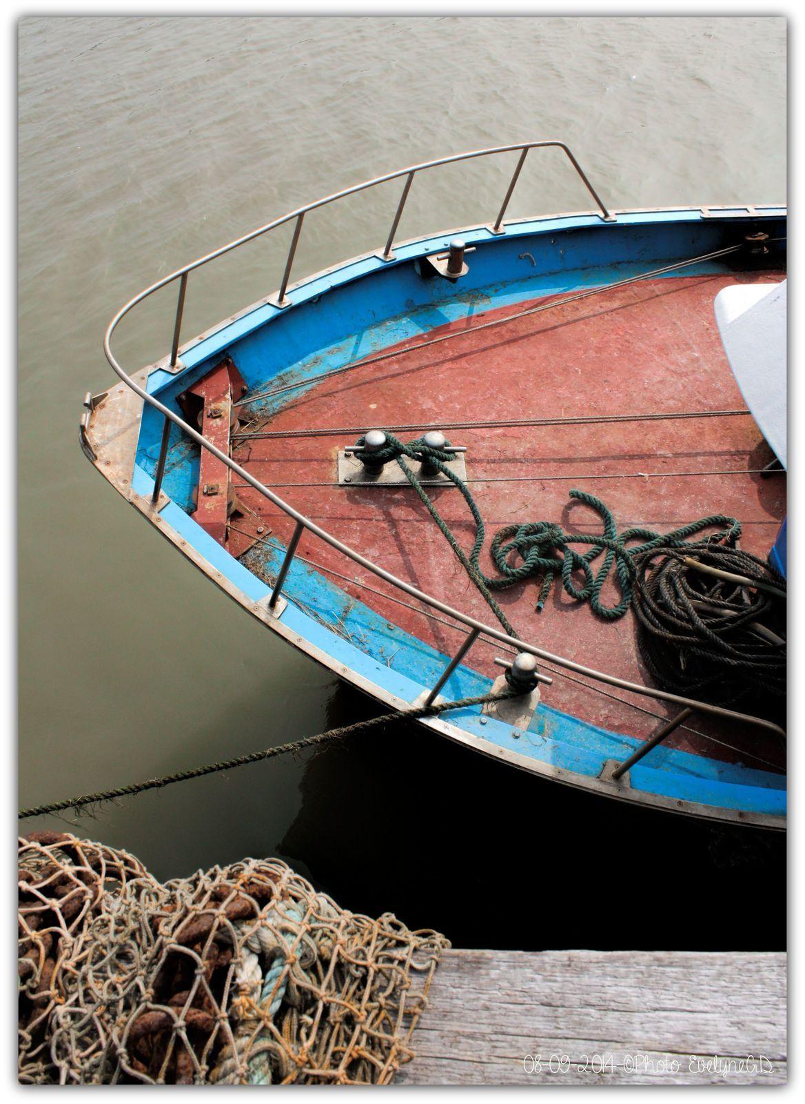 Photos au Canon EOS 450D - Port de la Pointe du Hourdel (80)