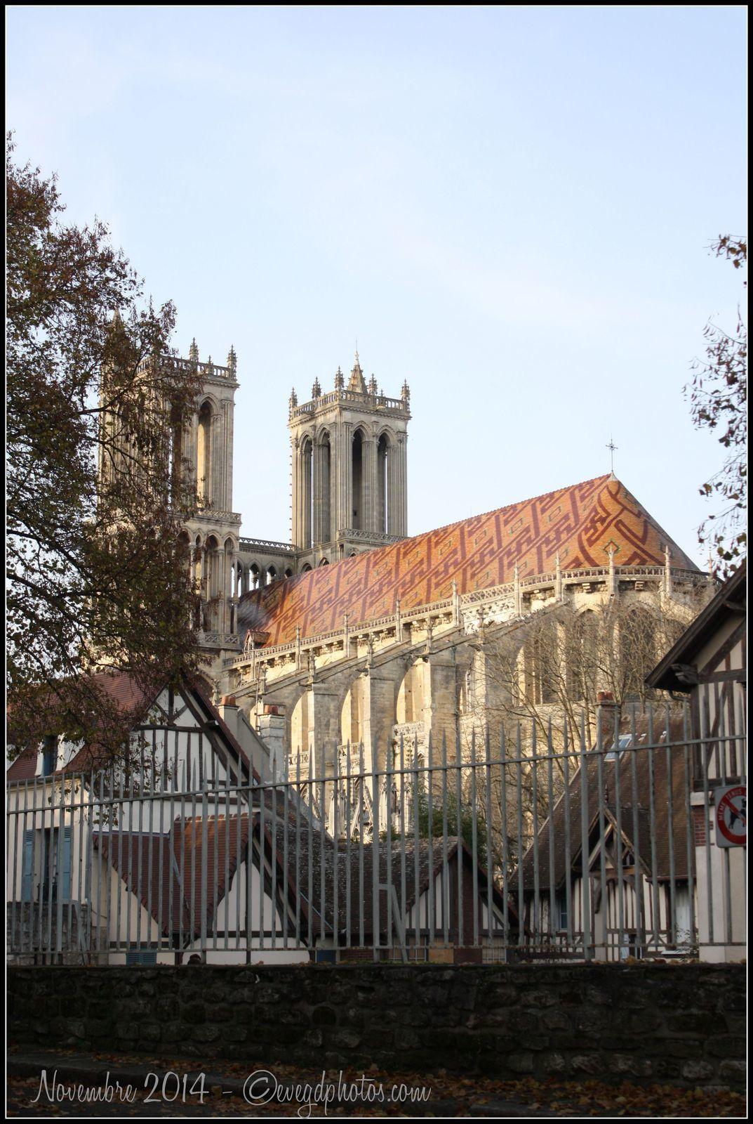 Balade d'automne au Square du Château..(2)