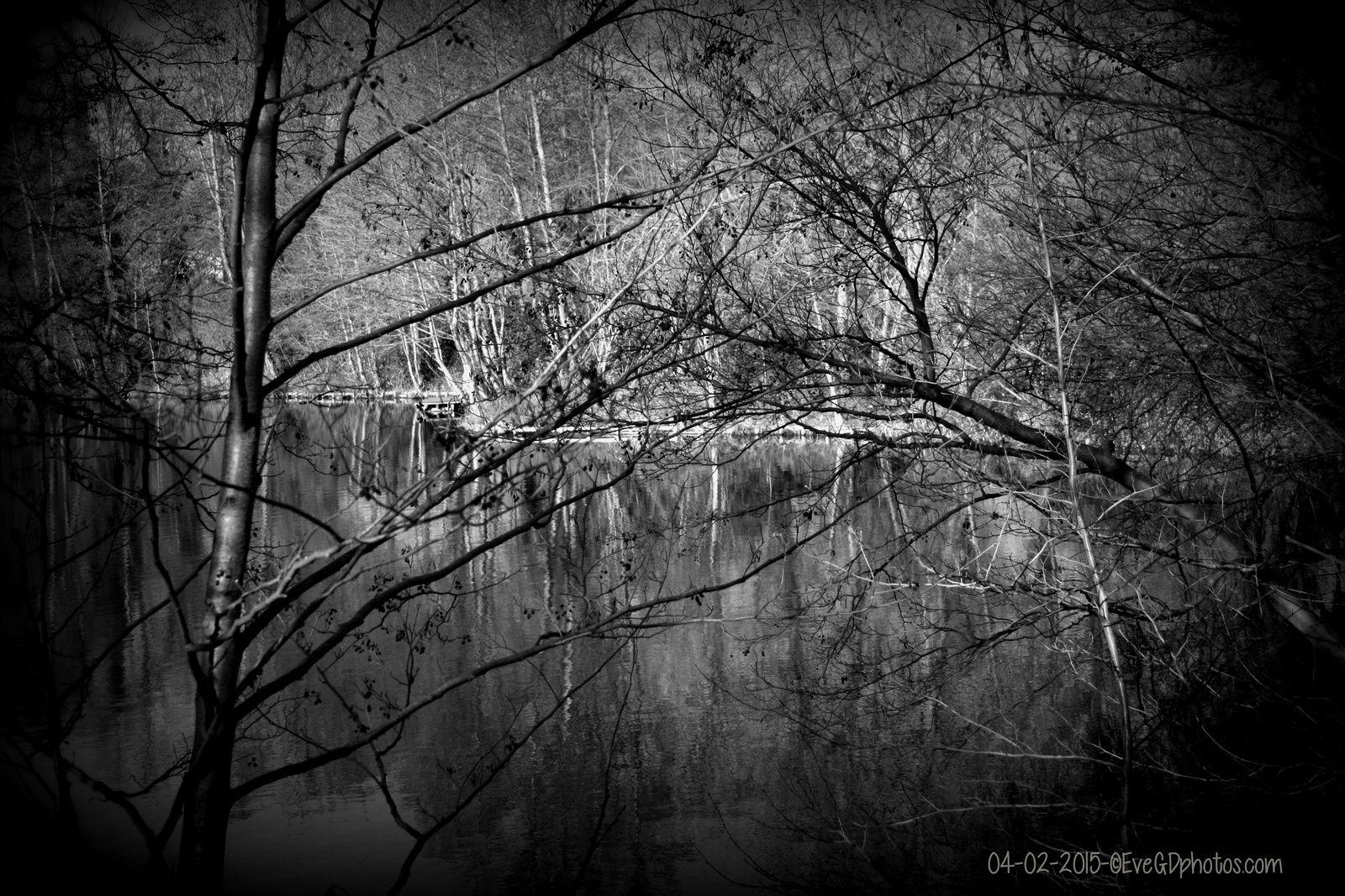 "Au bord du lac... effet ""Holga"""
