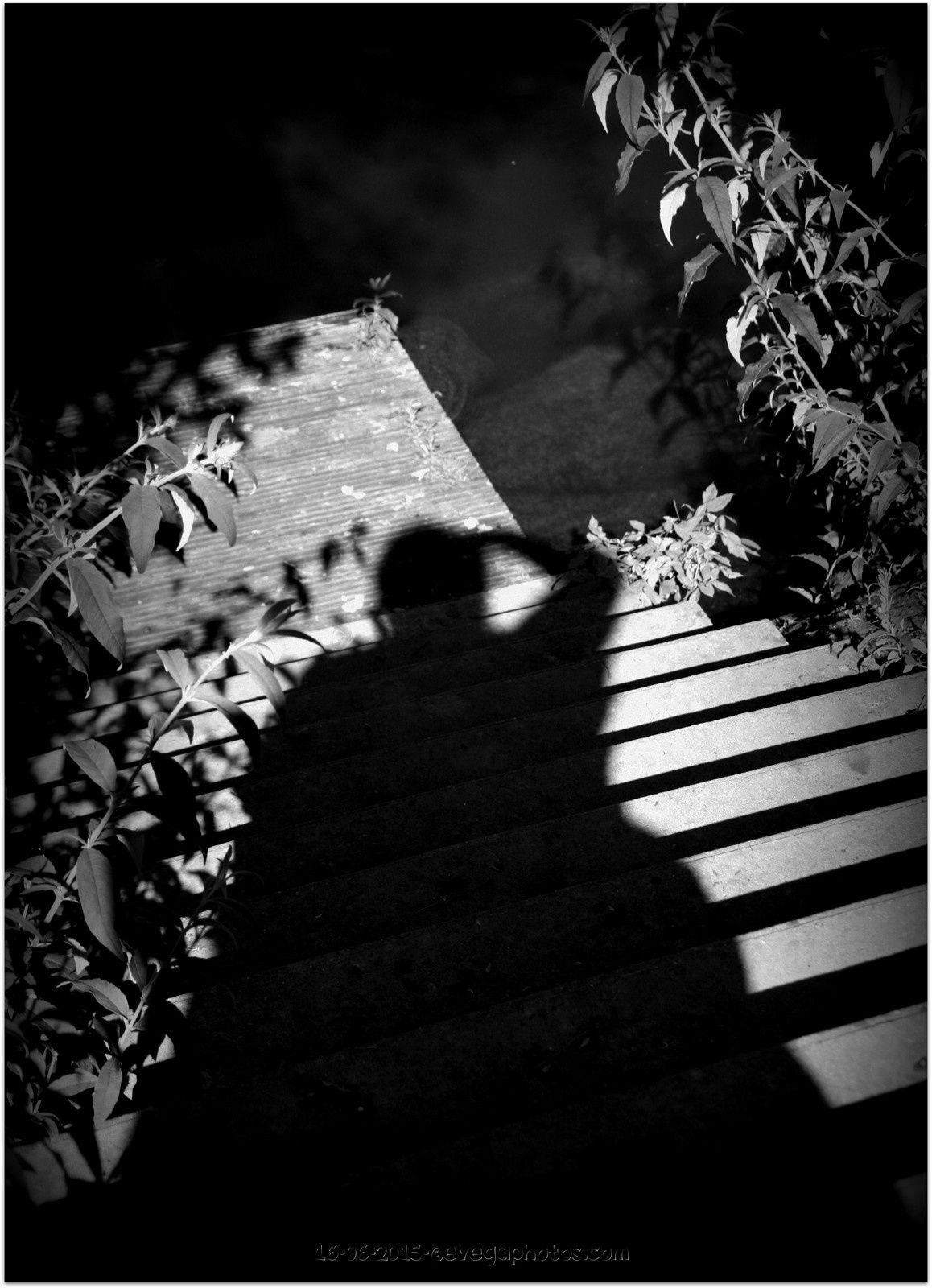 A la manière de Vivian Maier..