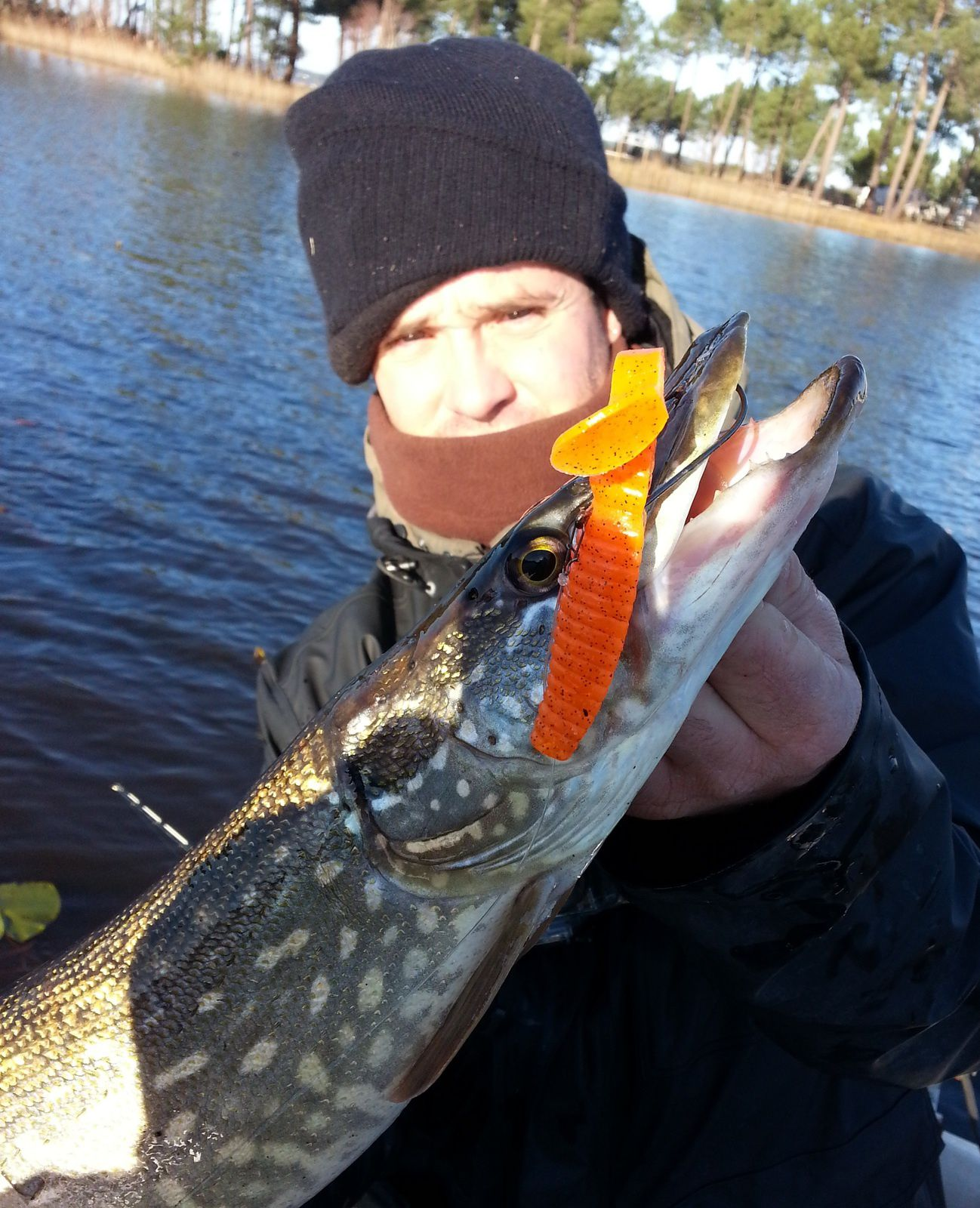 Session hivernale pike fishing