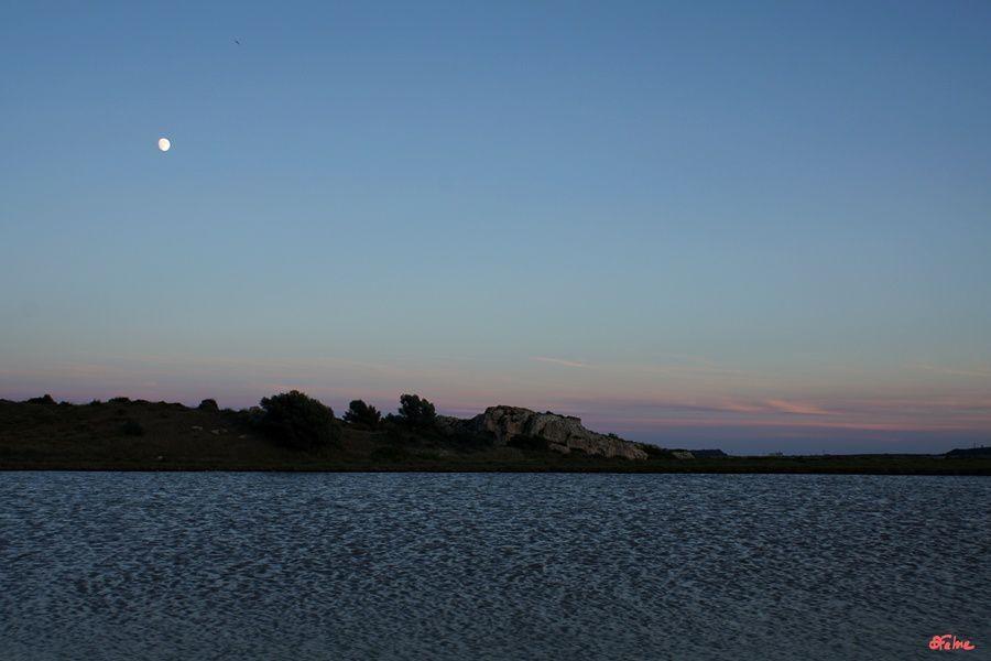 Sur la route des étangs, de Bages à Peyriac de Mer (Aude)
