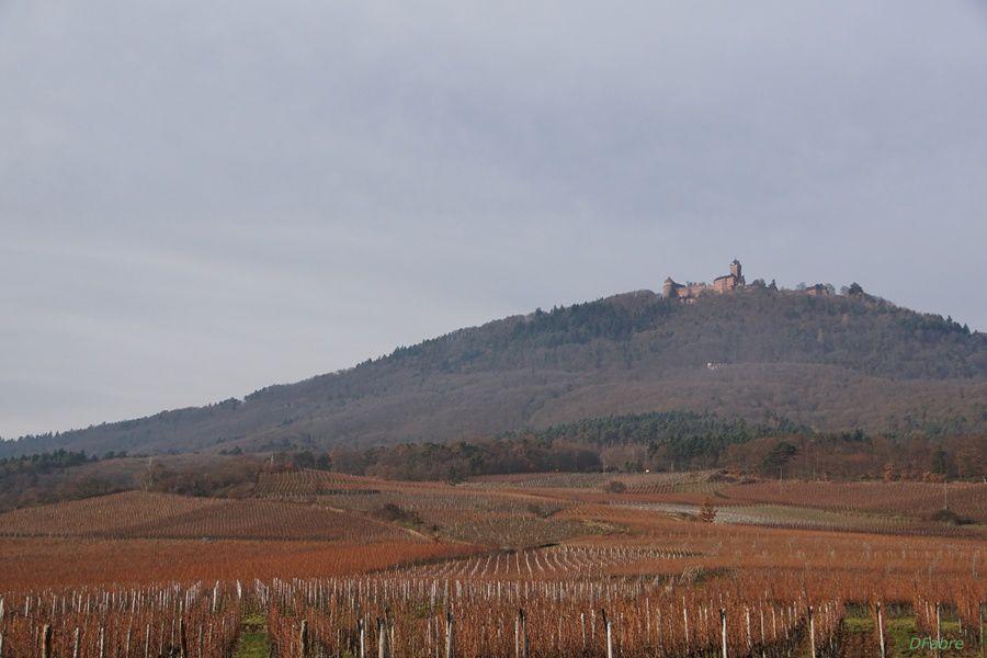 Saint Hippolyte - Alsace