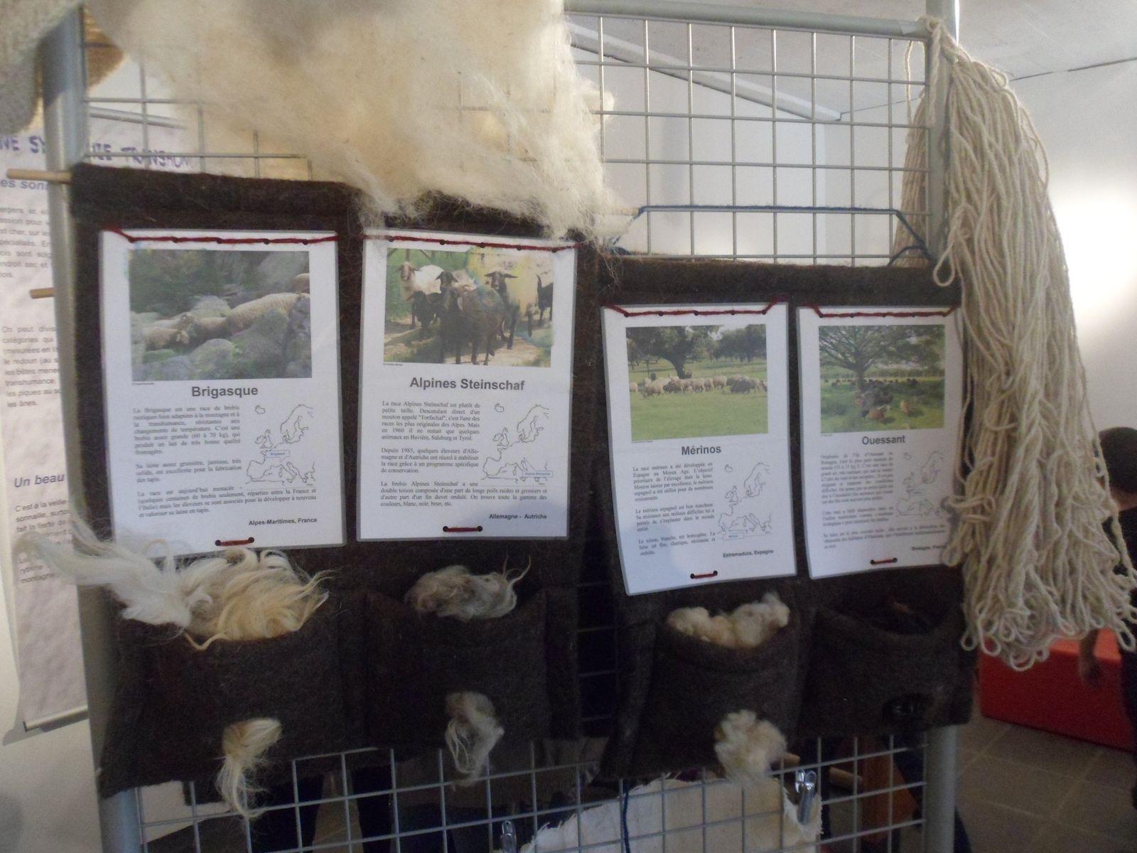 La fête de la laine au Beausset