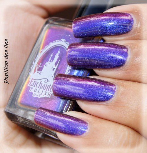 ENCHANTED POLISH : Octopus's Garden