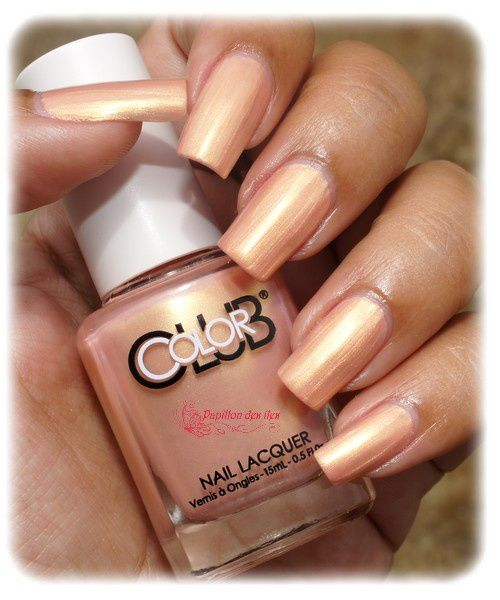 COLOR CLUB : Safari Sunset