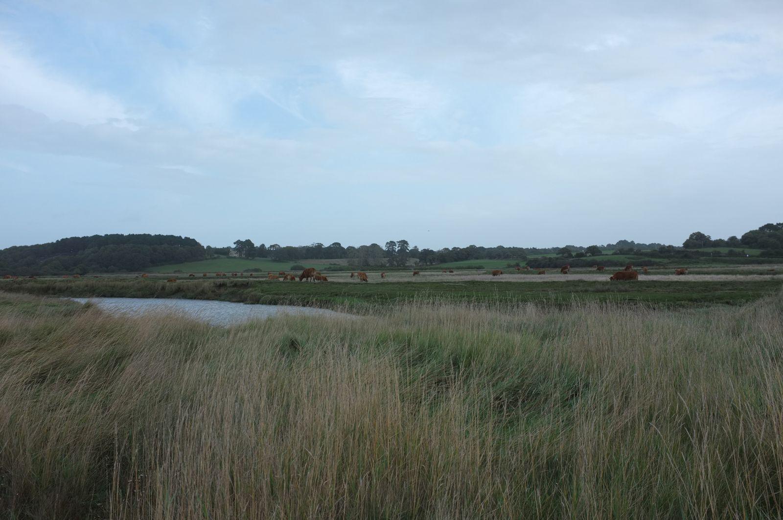 Balades en Loire-Atlantique