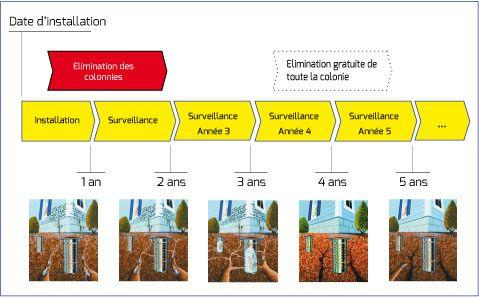 Traitement des termites à Marmande Ets A.G.I.R Devis Gratuit.