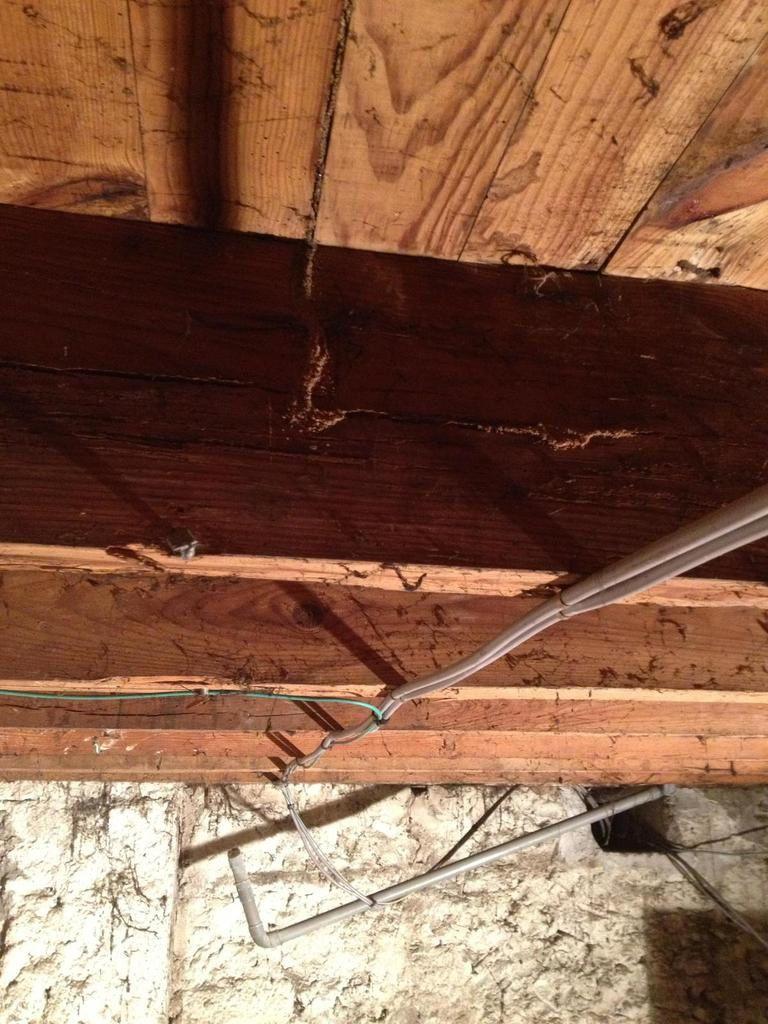 Ets A.G.I.R Spècialiste du traitement des termites en Gironde 33 et Bordeaux et son secteurs.
