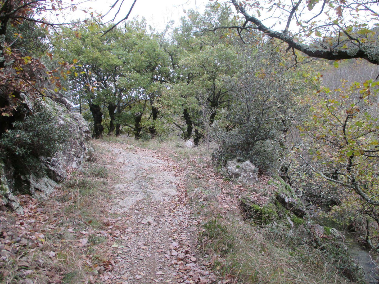 Retour sur le GR 42 pour remonter sur le Col des Ayes