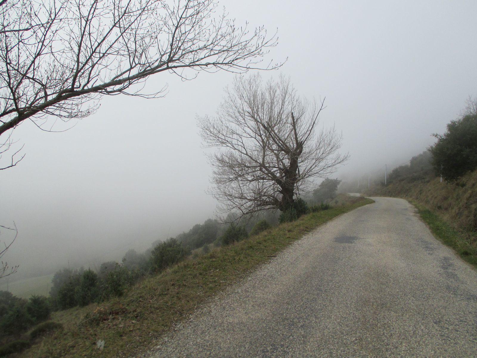 Que de brouillard se matin et même en hauteur, pourtant on est partis à 11h45