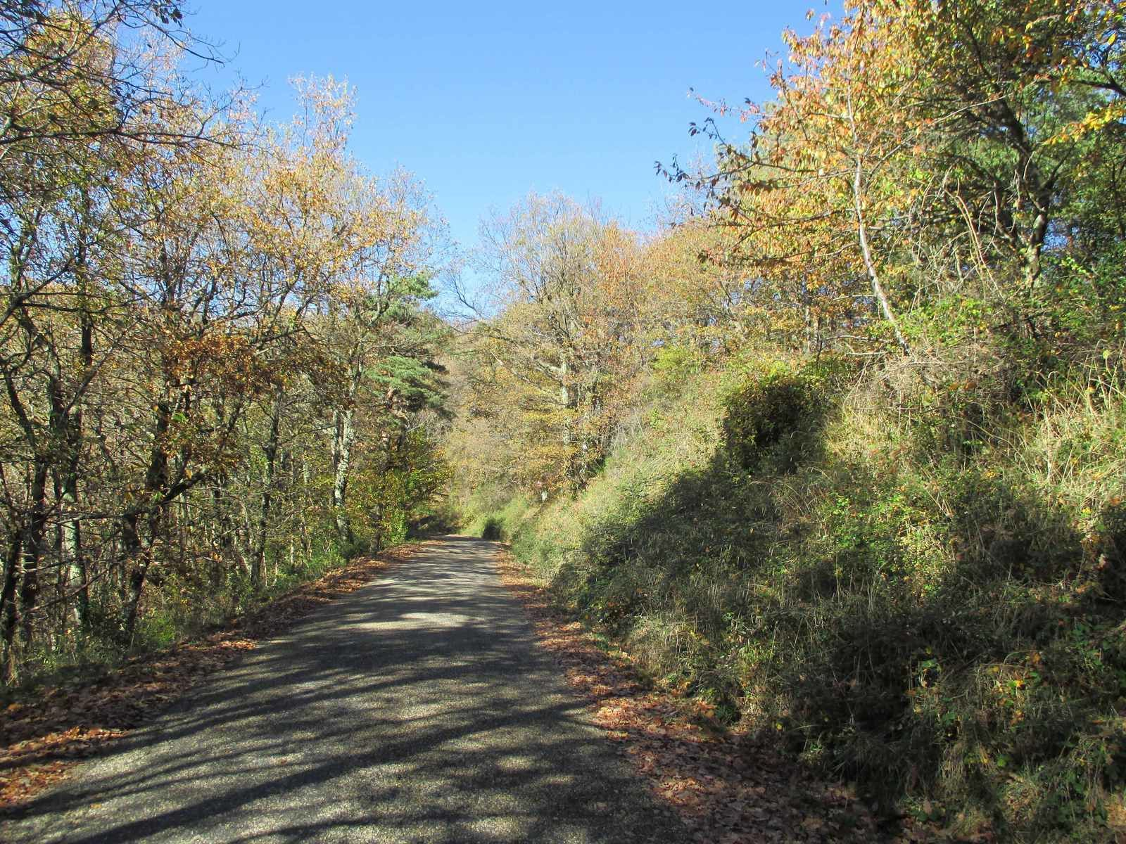 Aprés le Col de Rotisson direction la Croix de Nodon on est super bien on est en congé!