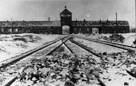 """Quand la firme Bayer achetait """"des lots de femmes"""" à Auschwitz"""