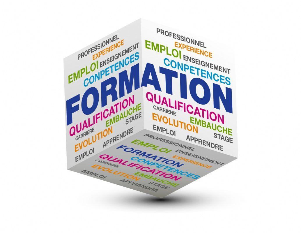 Formation obligatoire : le Céreq s'inquiète du transfert des responsabilités vers les salariés