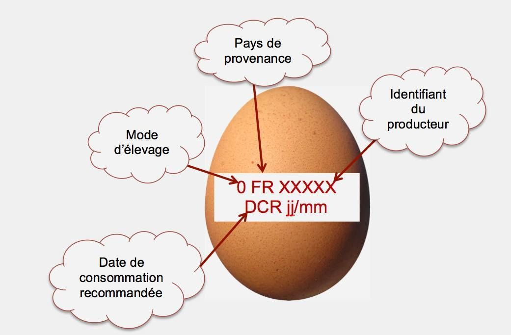 Fipronil, la contamination continue.........